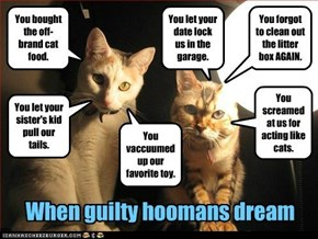 When guilty hoomans dream.