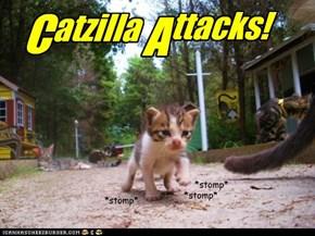 Catzilla Attacks!