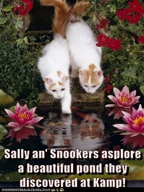 Sally an' Snookers asplore a beautiful pond they discovered at Kamp!
