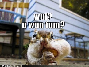 wuf? u wun fum?