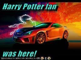 Harry Potter fan  was here!