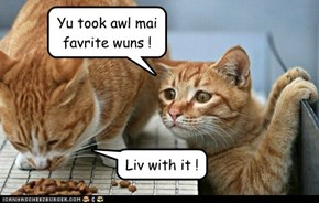 Yu took awl mai favrite wuns !