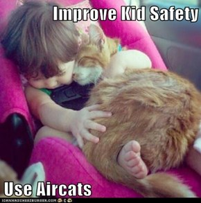Improve Kid Safety  Use Aircats