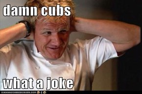 damn cubs  what a joke