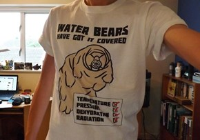 One Tough Shirt