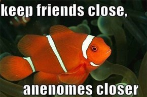 With Friends Like These...