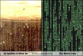 Air Bubbles in Glass Jar Totally Looks Like The Matrix Code
