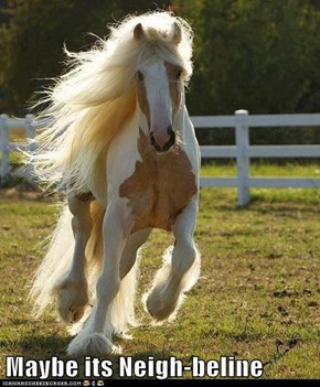 Maybe its Neigh-beline