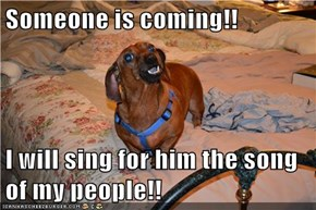 Someone is coming!!  I will sing for him the song of my people!!