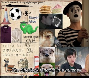 The Sherlock fandom in a nutshell