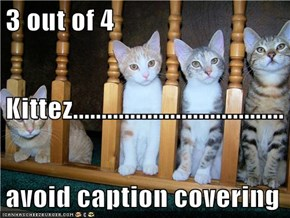 3 out of 4 Kittez..................................... avoid caption covering