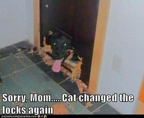 Sorry, Mom.....Cat changed the locks again