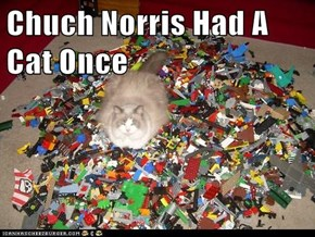 Chuch Norris Had A Cat Once