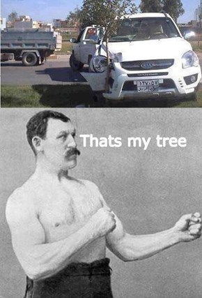 Overly Manly Tree