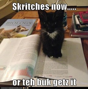 Skritches now.....  or teh buk getz it