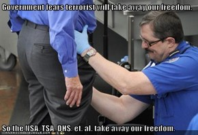 Government fears terrorist will take away our freedom.  So the NSA, TSA, DHS, et. al. take away our freedom.