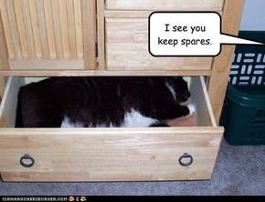 I see you keep spares.