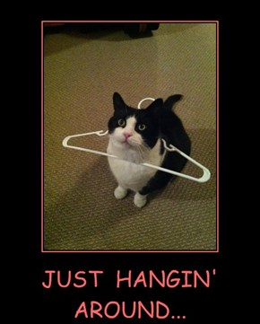 JUST  HANGIN'  AROUND...