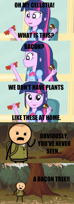 Equestria doesn't have Meat Plants