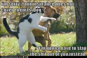 I'm sorry. Your insurance does not cover enemas, Dog.  I'm gonna have to slap                                                                     the sh*t out of you instead.