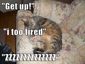 """Get up!""  ""i too tired"" ""ZZZZZZZZZZZZZZ"""