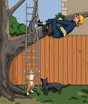 We All Need Help Sometimes