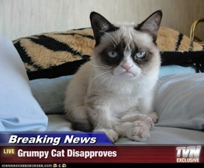 Breaking News - Grumpy Cat Disapproves