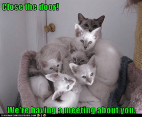 Close the door!  We're having a meeting about you.