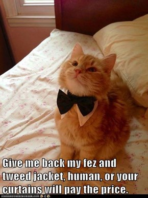 Give me back my fez and tweed jacket, human, or your curtains will pay the price.