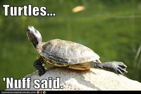 Turtles...  'Nuff said.