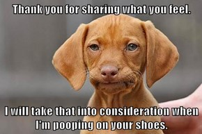 Thank you for sharing what you feel.  I will take that into consideration when I'm pooping on your shoes.