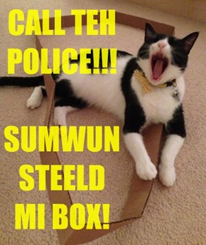 CALL TEH POLICE!!!  SUMWUN STEELD  MI BOX!