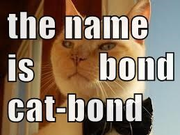 the name is  bond cat-bond