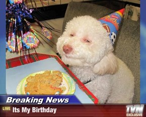 Breaking News - Its My Birthday