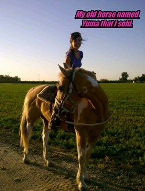 My horse yuma and my older sister