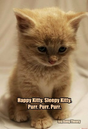 Happy Kitty. Sleepy Kitty. Purr. Purr. Purr.