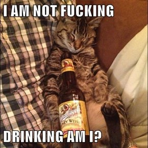 I AM NOT FUCKING  DRINKING AM I?