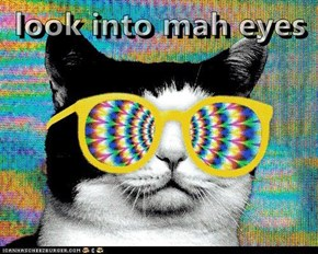 look into mah eyes