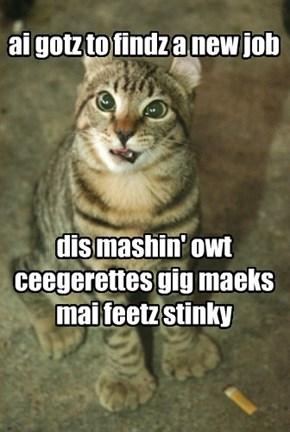 ai gotz to findz a new job      dis mashin' owt ceegerettes gig maeks mai feetz stinky