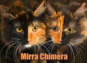 Mirra Chimera