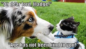 """""""Oh dear lord, Madge!""""  """"Age has not been kind to you!"""""""