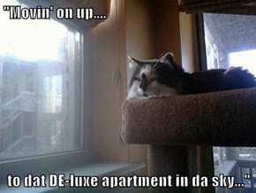 """""""Movin' on up....  to dat DE-luxe apartment in da sky..."""""""
