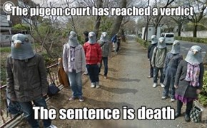 Dafuq is Happening Here?