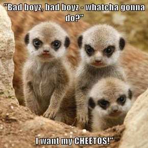 """Bad boyz, bad boyz - whatcha gonna do?""  I want my CHEETOS!"""