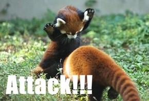 Adorbz Red Pandas