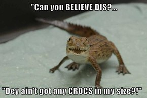 """""""Can you BELIEVE DIS?...  """"Dey ain't got any CROCS in my size?!"""""""