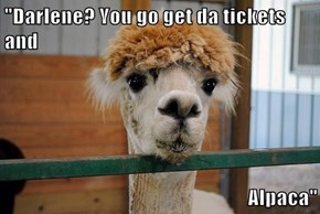 """Darlene? You go get da tickets and  Alpaca"""