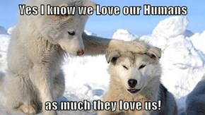 Yes I know we Love our Humans   as much they love us!