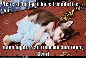We're so lucky to have friends like you!  Good night to all from me and Teddy Bear!