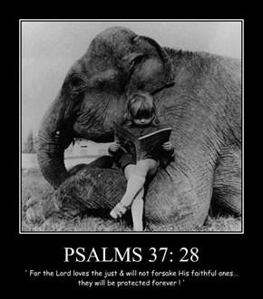PSALMS 37: 28